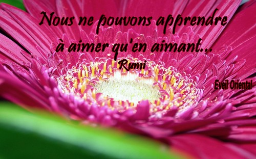 On apprend à aimer en aimant