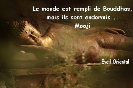 Le monde est rempli de Bouddhas, mais ils sont endormis - Mooji -