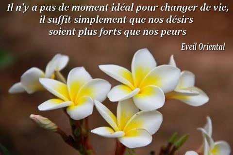 Il n'y a pas de moment idéal pour changer de vie, il suffit simplement que nos désirs soient plus forts que nos peurs - Eveil Oriental -