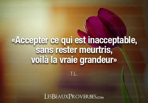 «Accepter ce qui est inacceptable, sans rester meurtris, voilà la vraie grandeur» – T.L.