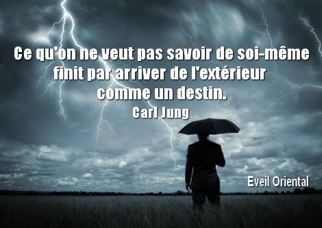 Ce qu'on ne veut pas savoir de soi-même fini par nous arriver de l'extérieur comme un destin - Carl Jung -