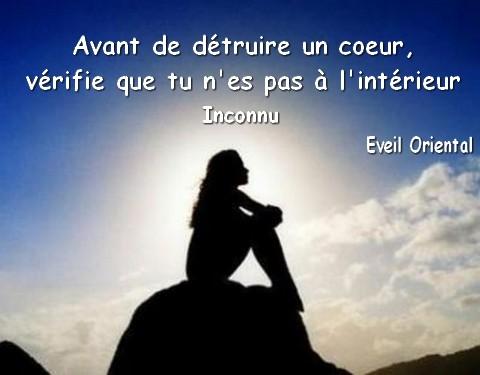 Top Le coeur blessé… – Mes mots douceurs VE87