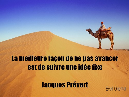 Le meilleur moyen de ne pas avancer est de suivre une idée fixe - Jacques Prévert -