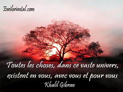 Toutes les choses, dans ce vaste univers, existent en vous, avec vous et pour vous - khalil Gibran -