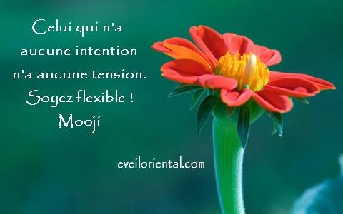 Soyez flexible !