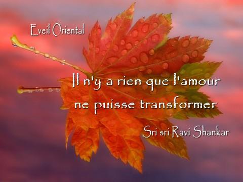 L'amour peut tout transformer
