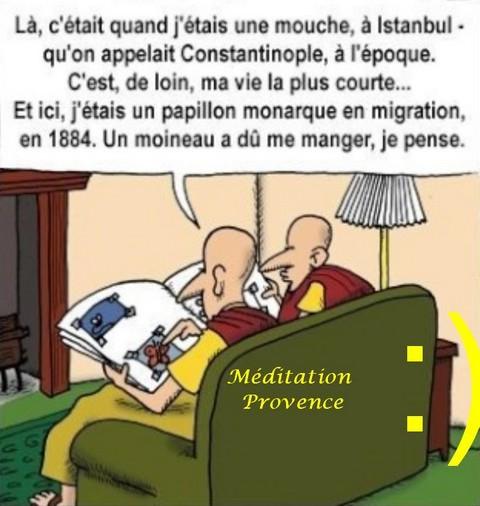 La réincarnation chez les bouddhistes