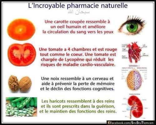 Légumes et corps