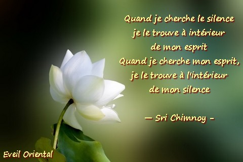 Citations que nous aimons Silence1