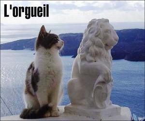 ORGUEIL